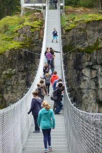 town trip suspension bridge